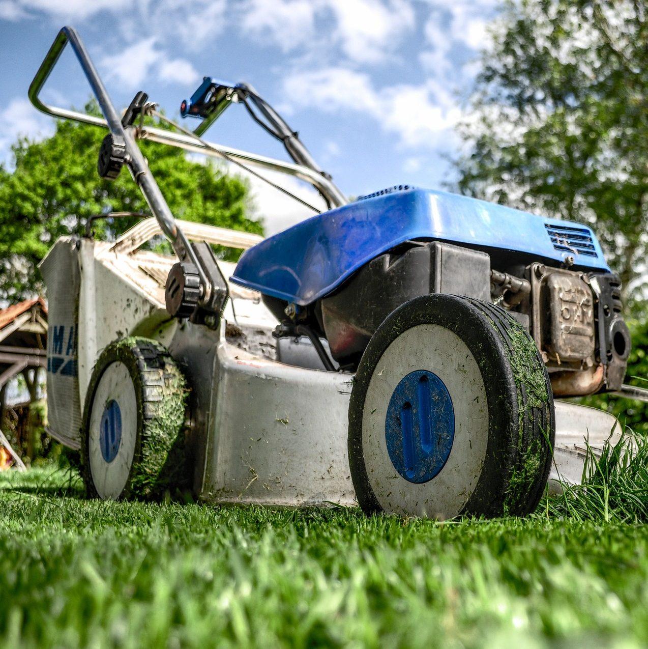cropped lawnmower 384589 1920 2 - Top Clean Service - Impresa di pulizie a Siena